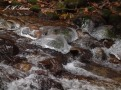 Icy Kokanee Creek